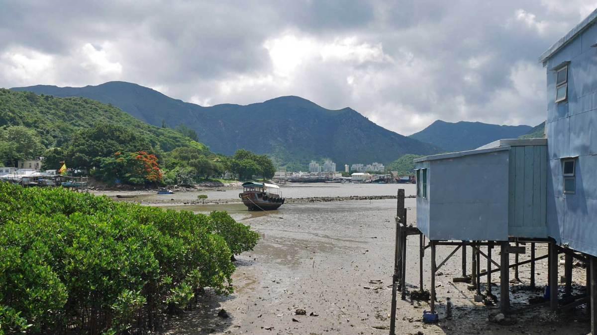 Hong-Kong-tai-o-3