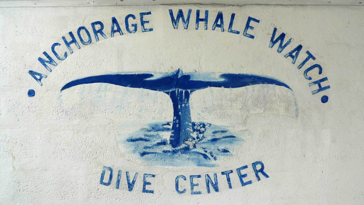 dominica_anchorage-whale-sign
