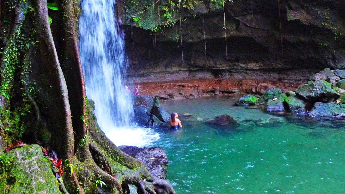 dominica_emerald-pool-2