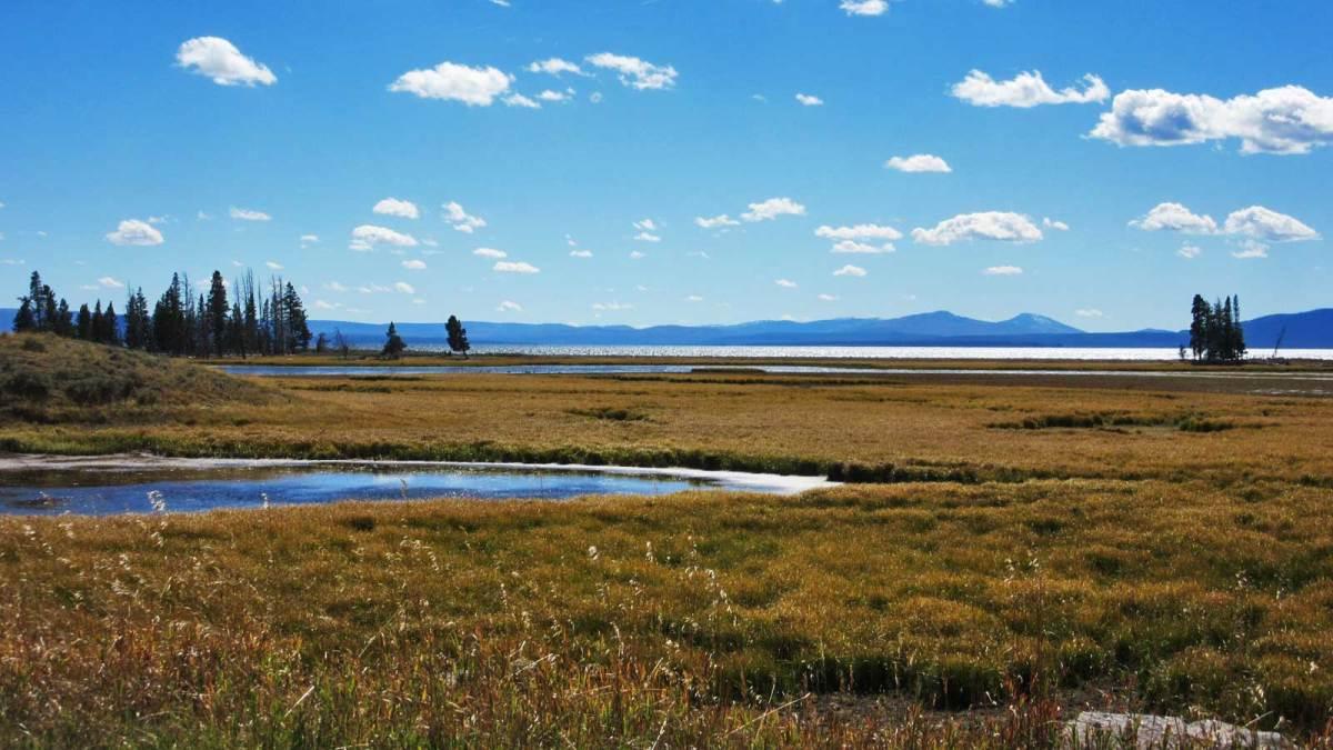 yellowstone-lake-view-1