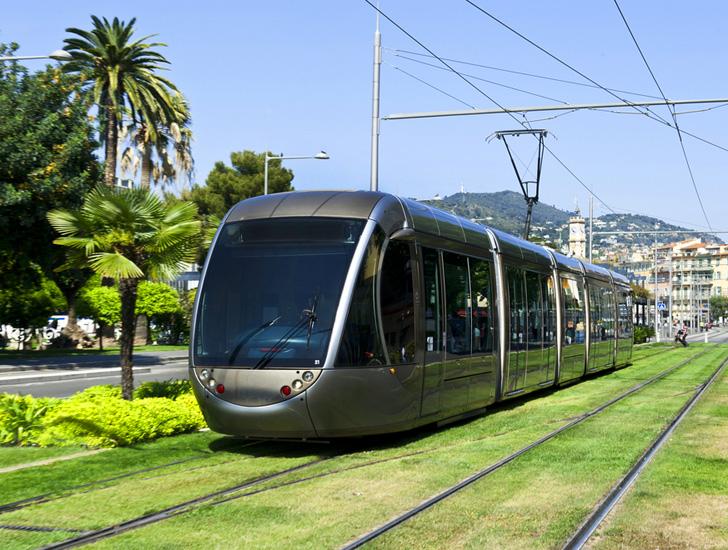 Light Rail grassed track