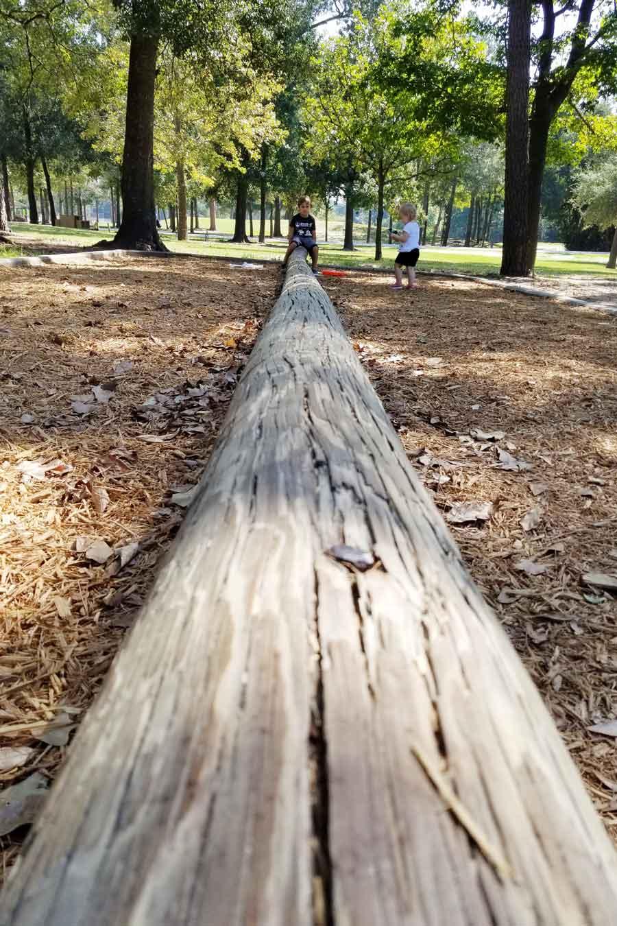 Collins Park