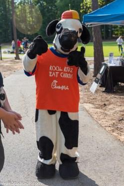 Chic Fil A Cow