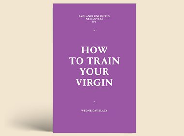 How To Train Your Virgin: $3.99