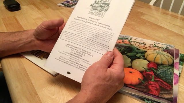 Favorite Plant Nursery Magazines and Seed Catalogs - Burnt Ridge