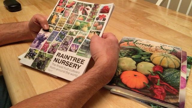 Favorite Plant Nursery Magazines and Seed Catalogs - Raintree