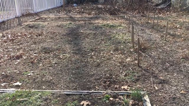 Sustainable Homesteading in Maryland Part 1 - Garden Area