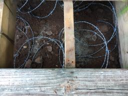 More Groundhog Repellent and Deterrent - Barbed Wire