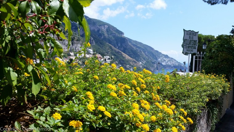 Yellow flowers and a view of Positano