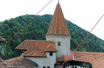 Bran_Romania (8 of 80)