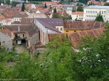 Brasov_Romania (8 of 289)