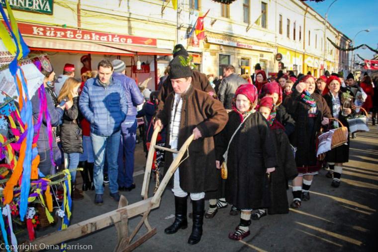 Romanian Traditions Christmas Maramures Plow