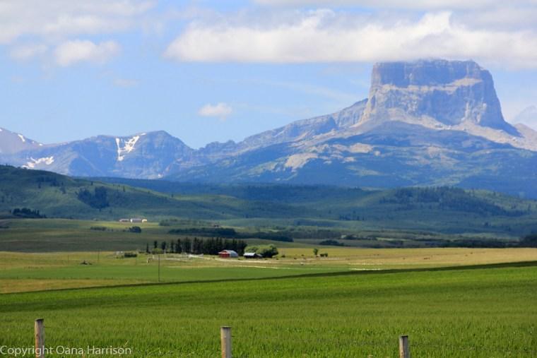 Montana-mountains