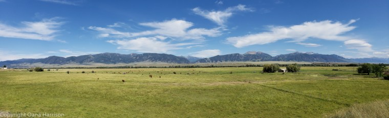 Panoramic-view-of-Yellowstone-Mountains-from-Ennis