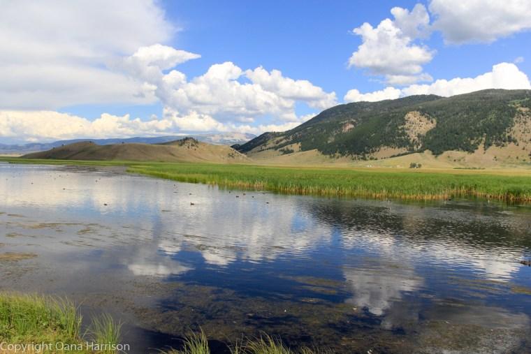 Grand-Teton-National-Park-wildlife-preserve