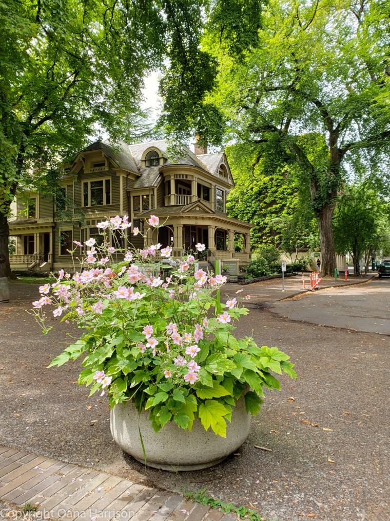 Oregon-Portland-OSU