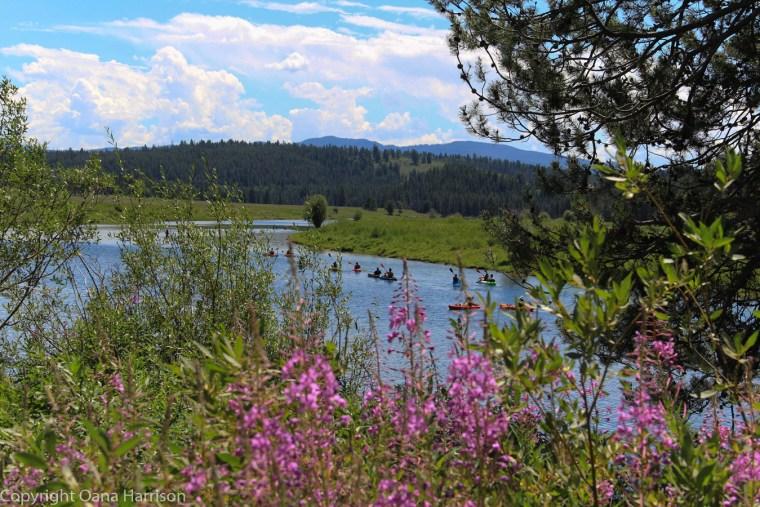 Grand-Teton-National-Park-river