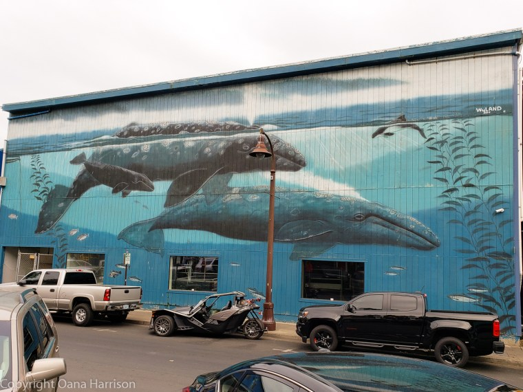 Newport-OR-whales-mural