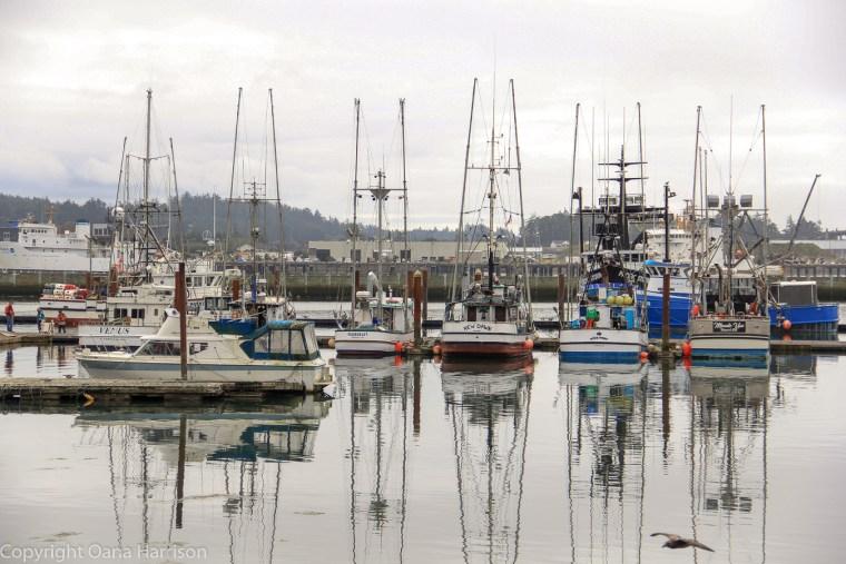 Newport-OR-boats-in-harbor-35