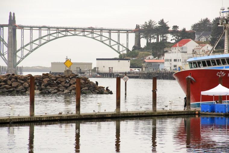Newport-OR-boats-in-harbor-and-bridge