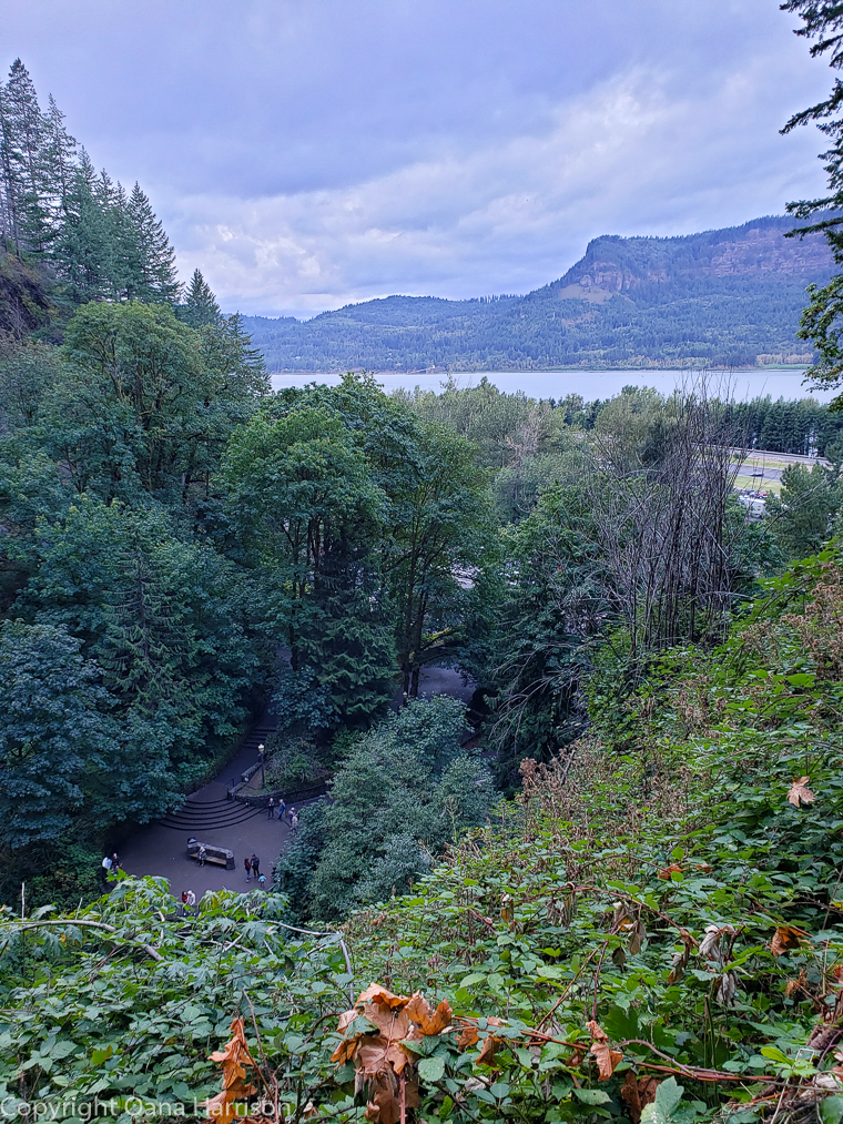 Ainsworth Park view of Columbia River