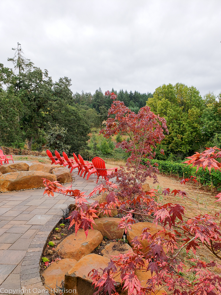 Eola Hills Legacy Winery Salem Oregon red chairs near red maples