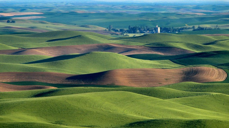 The-Palouse-green-hills