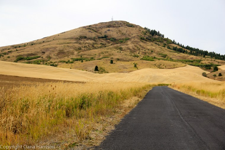 The-Palouse-and-Steptoe-Butte-Washington