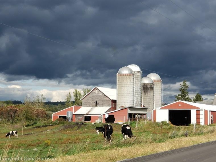 Royal-Mountain-NY-farm-in-storm