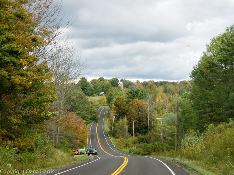 Royal-Mountain-NY-hilly-road