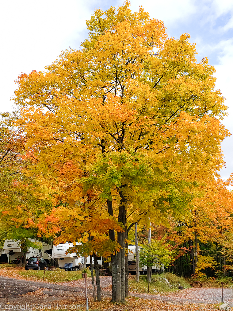 Quebec City RV park in the fall