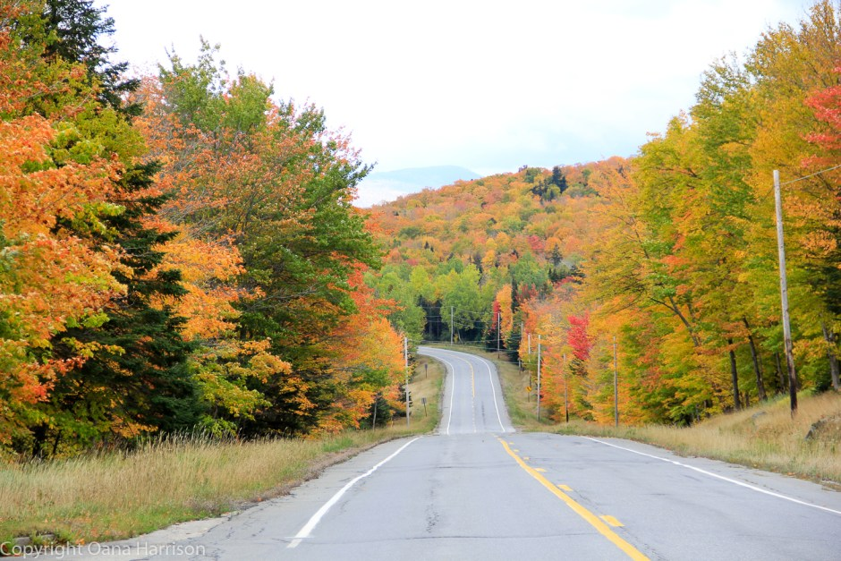 Fall colors along Old Canada Road Route 201 in Maine