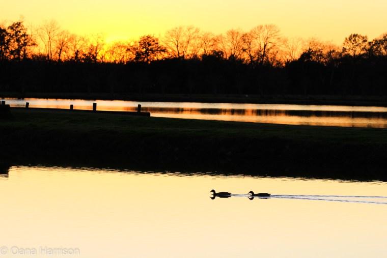 Poche's RV park - sunset