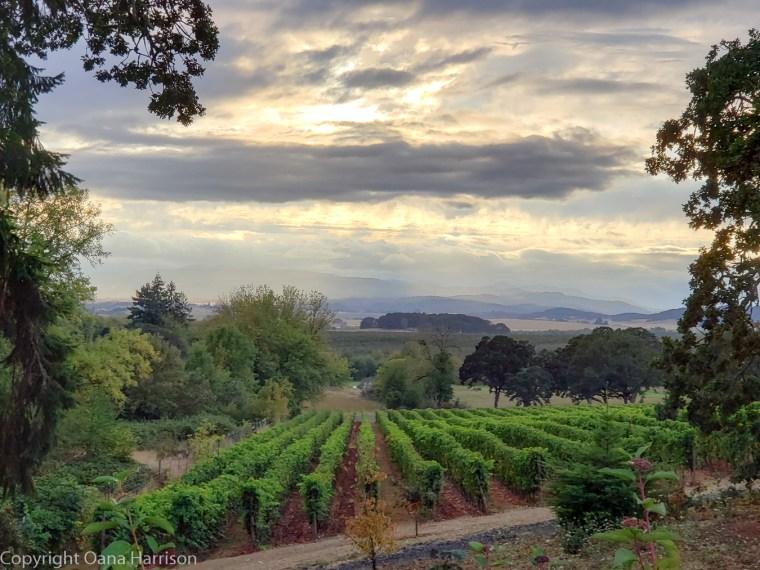 Eola Winery, Salem, Oregon