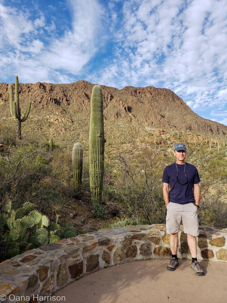 Saguaro West Arizona David
