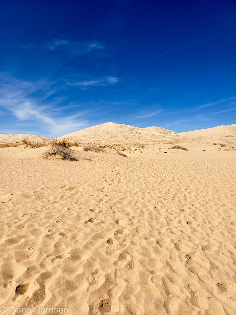Kelso-Dunes-Mojave-Desert-California