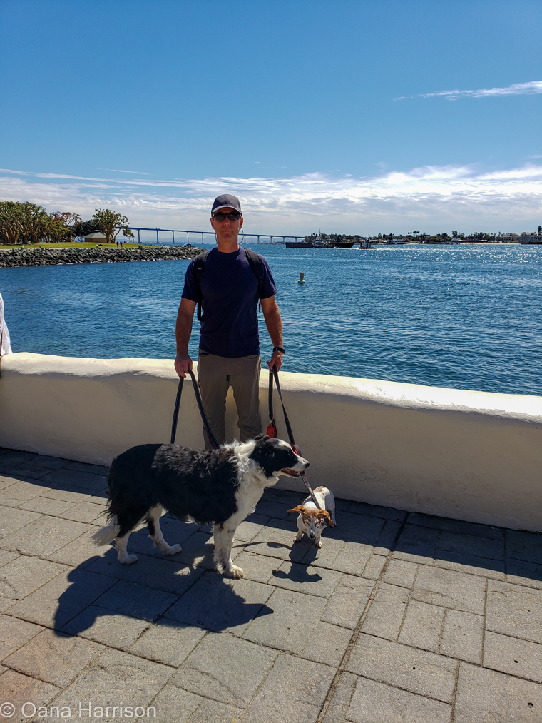 San Diego, California, David with dogs