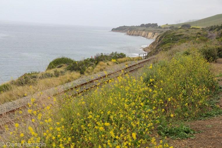 Santa Barbara, California, the coast