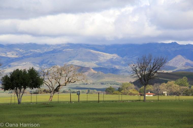 Cachuma Lake area, California