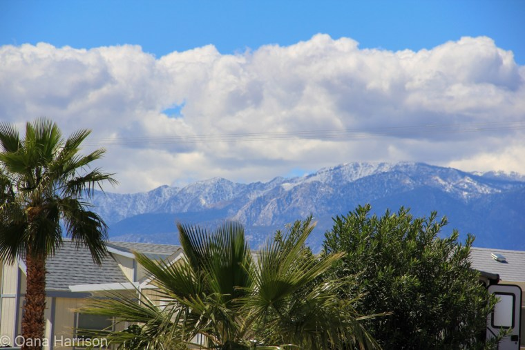Sky Valley Desert Hot Springs CA, mountains and palm trees