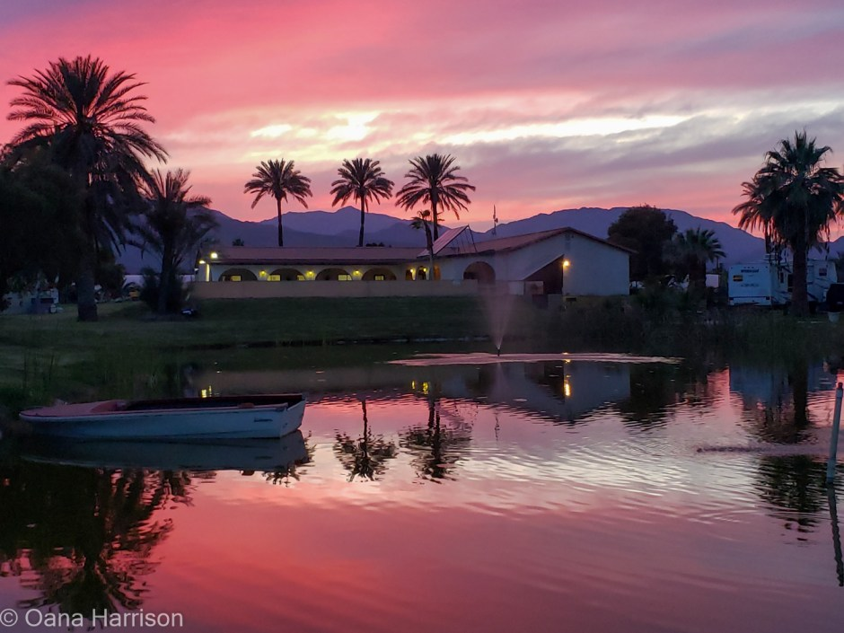 Oasis-Palms-Salton-Sea-California pretty sunset and palm trees