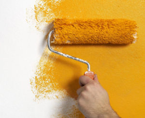 choosing the right paint