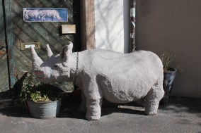 Rhino statue decorating someone's doorstep