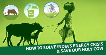 Holy-Cow-GreatGameIndia-Energy-Crisis-Biogas-Biomethane-Slaughter-Export-Conspiracy-Electricity-Germany