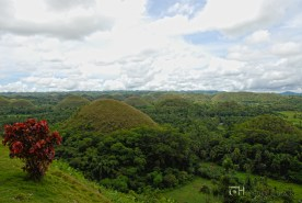 The famous Chocolate Hills.