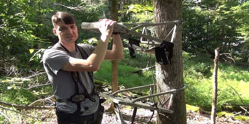 How-to-Set-up-a-Tree-Stand
