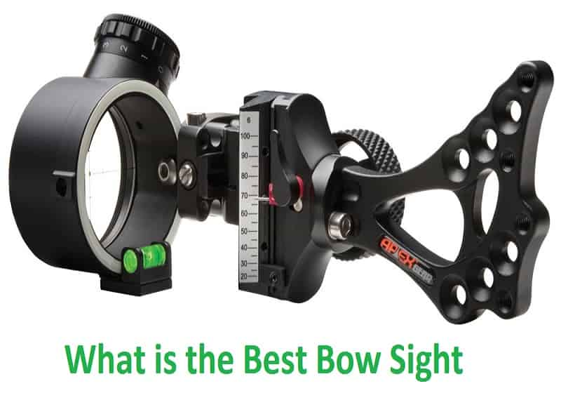 What is the Best Bow Sight