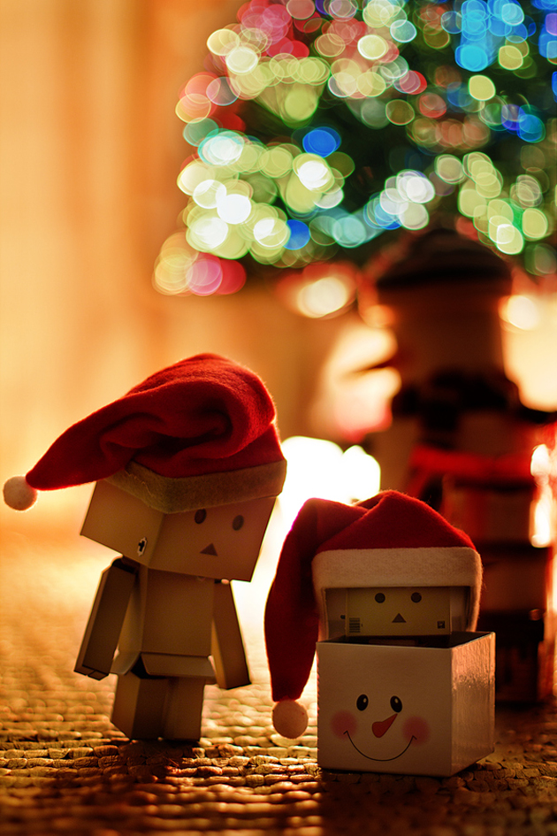 Christmas Holiday Photography Stunning Photographs Of