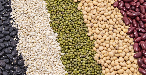 Surprising Sources of Calcium: White Beans
