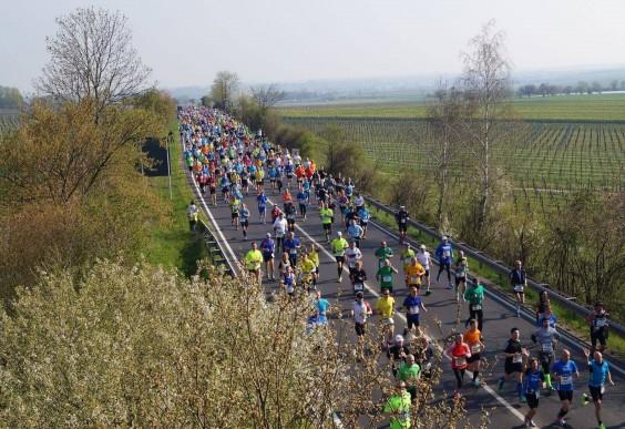 Marathon Deutsche Weinstraße: Bockenheim, Germany